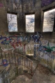 Mount Wood Overlook 23